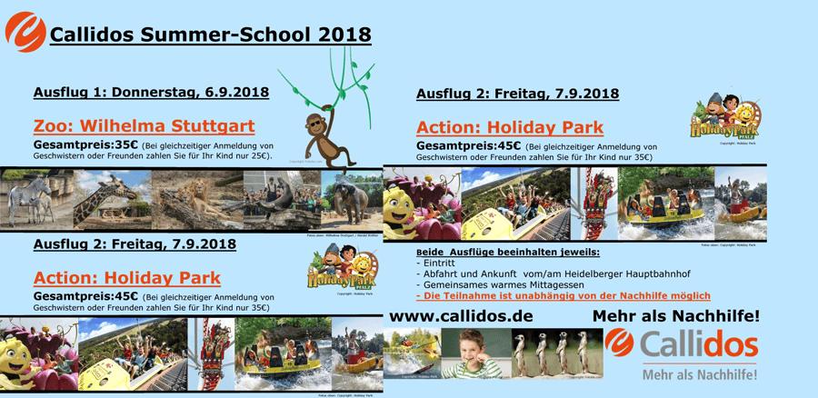 Callidos-Summerschool-2018